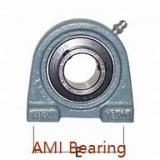 AMI UGF318  Flange Block Bearings