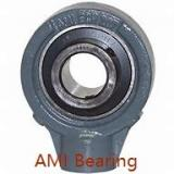 AMI UE208-24MZ20RF  Mounted Units & Inserts
