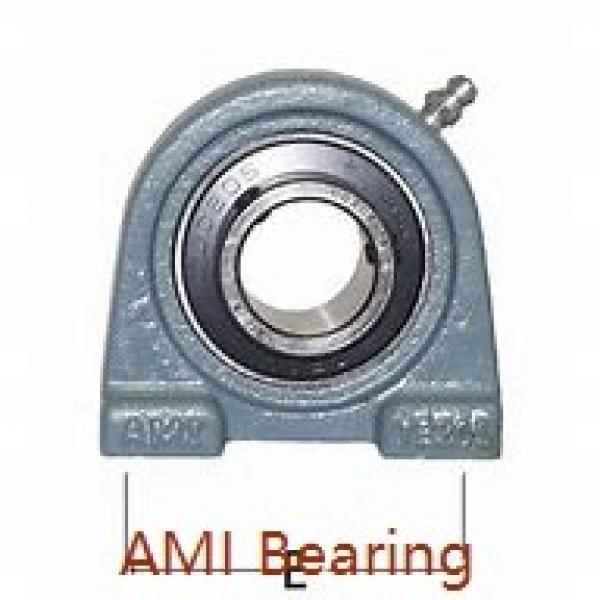 AMI MBLCTE206NP  Flange Block Bearings #1 image