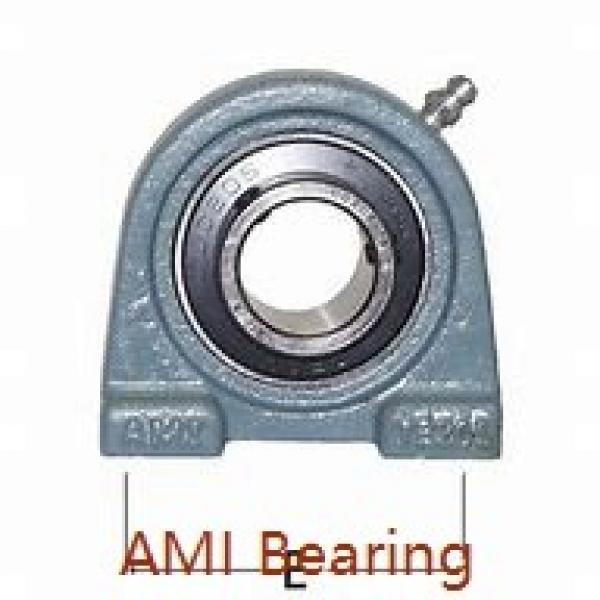 AMI UGF318  Flange Block Bearings #1 image