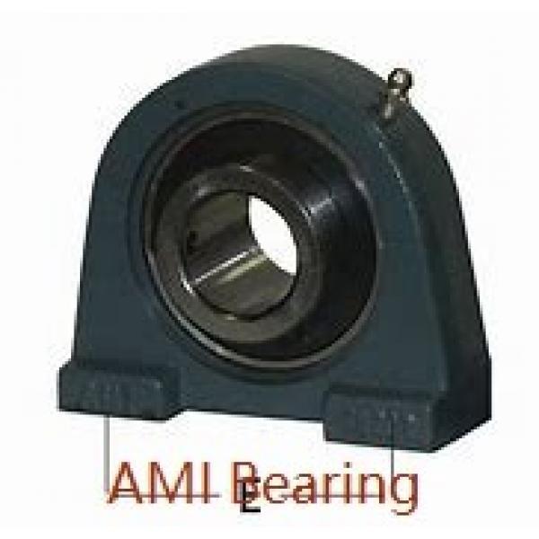 AMI BLF2-10MZ2B  Flange Block Bearings #1 image