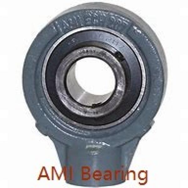 AMI UCWTPL206-20MZ20CW  Mounted Units & Inserts #1 image