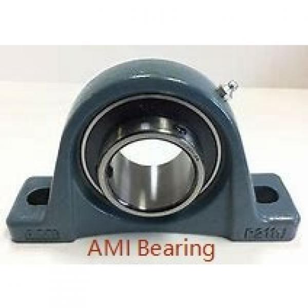 AMI UGFC206  Flange Block Bearings #1 image
