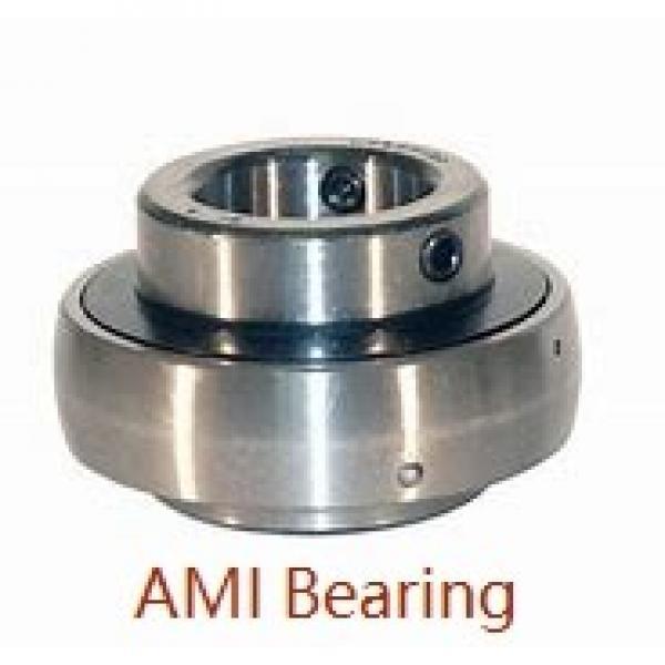AMI MUCHPL201-8W  Hanger Unit Bearings #1 image