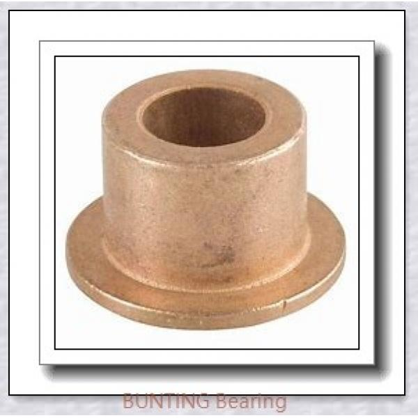BUNTING BEARINGS TT0602  Plain Bearings #2 image