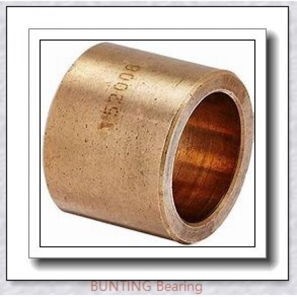 BUNTING BEARINGS FFM003006012 Bearings #1 image