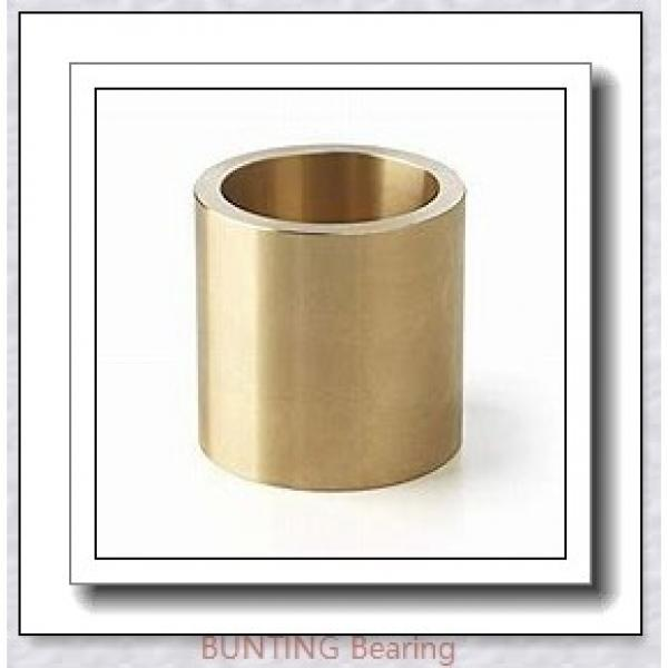 BUNTING BEARINGS EP081416 Bearings #3 image