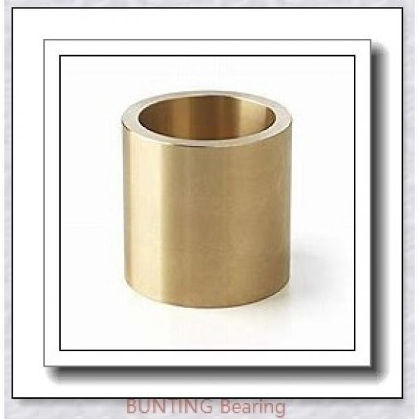 BUNTING BEARINGS TT0703 Bearings #1 image