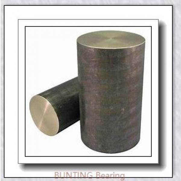 BUNTING BEARINGS TT0602  Plain Bearings #3 image