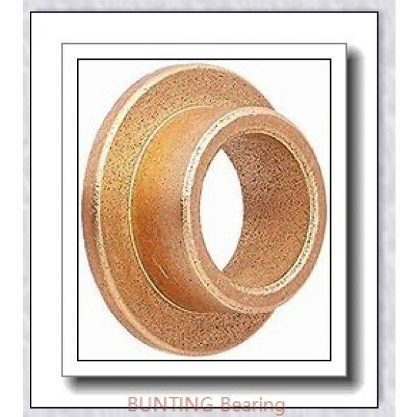 BUNTING BEARINGS TT1002  Plain Bearings #1 image