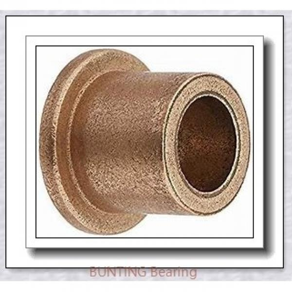 BUNTING BEARINGS CB101818 Bearings #1 image