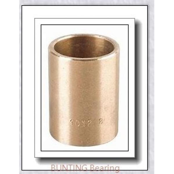 BUNTING BEARINGS TT1002  Plain Bearings #3 image