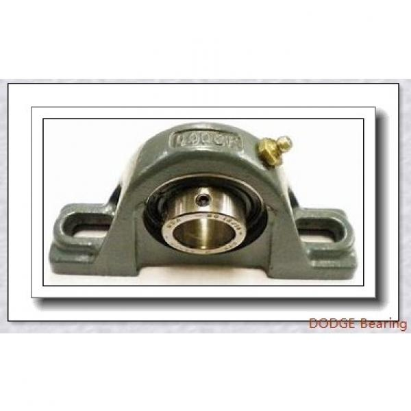 DODGE F2B-SXV-101  Flange Block Bearings #1 image