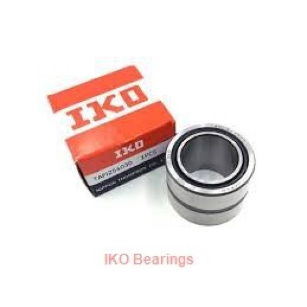 1 Inch   25.4 Millimeter x 1.25 Inch   31.75 Millimeter x 0.375 Inch   9.525 Millimeter  IKO BAM166  Needle Non Thrust Roller Bearings #2 image