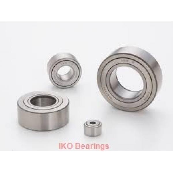 1 Inch | 25.4 Millimeter x 1.25 Inch | 31.75 Millimeter x 0.875 Inch | 22.225 Millimeter  IKO BA1614ZOH  Needle Non Thrust Roller Bearings #1 image